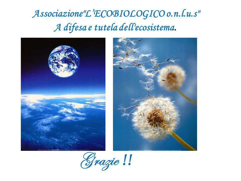 Grazie !! Associazione L'ECOBIOLOGICO o.n.l.u.s