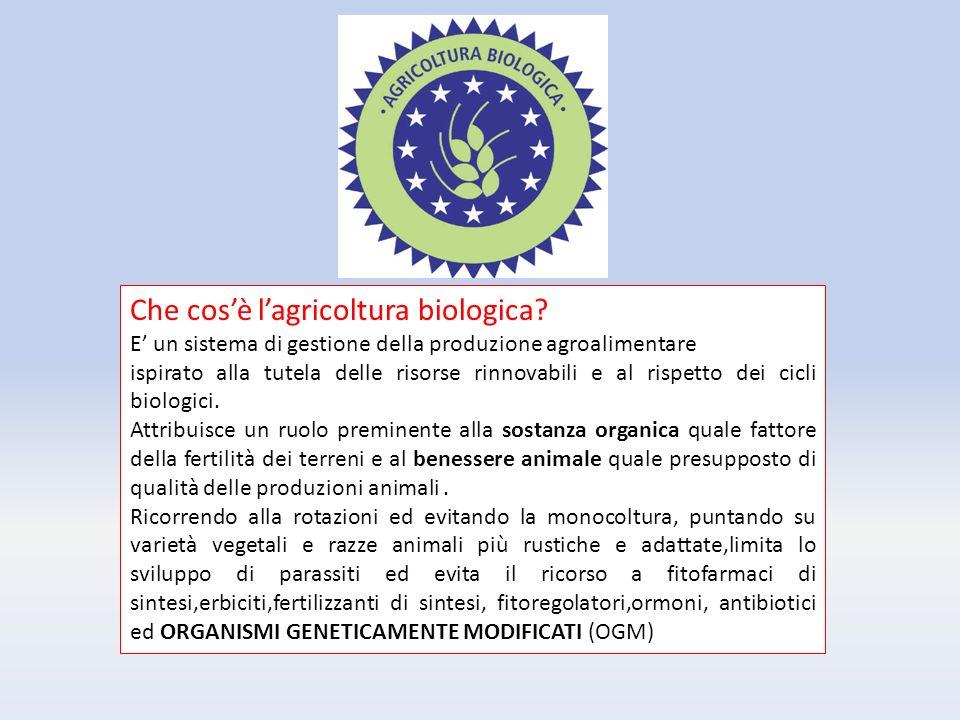 Che cos'è l'agricoltura biologica