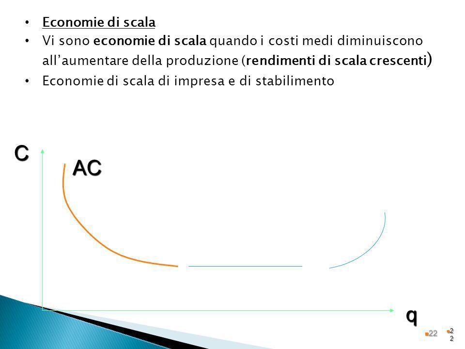 Economie di scala Vi sono economie di scala quando i costi medi diminuiscono all'aumentare della produzione (rendimenti di scala crescenti)