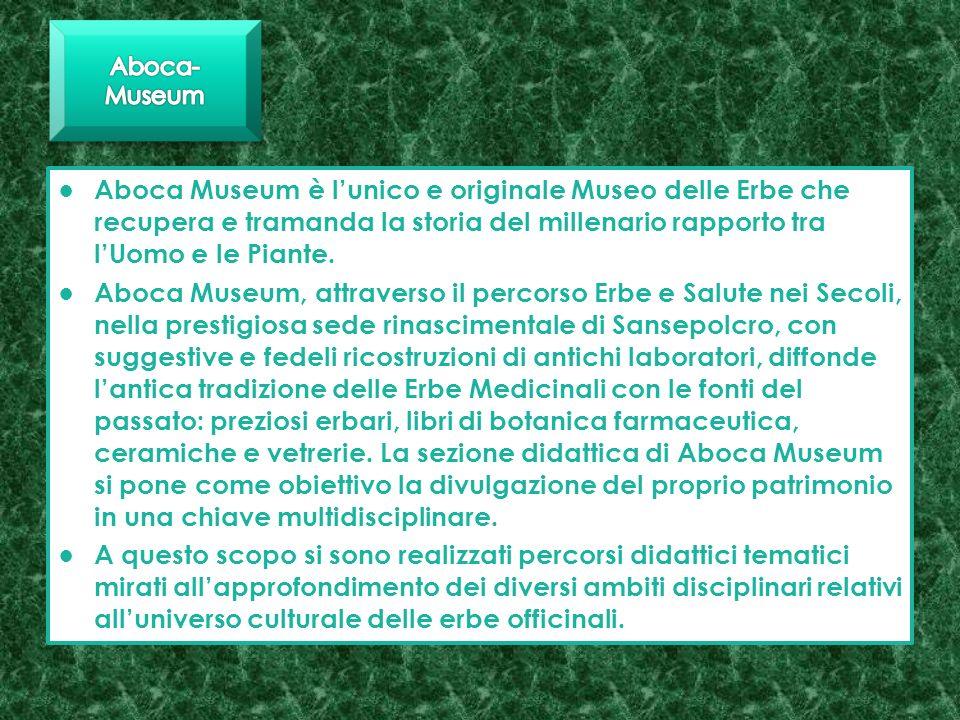 Aboca-Museum Aboca Museum è l'unico e originale Museo delle Erbe che recupera e tramanda la storia del millenario rapporto tra l'Uomo e le Piante.