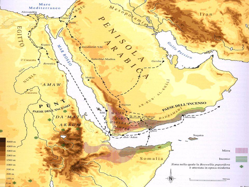 Da tempi antichissimi gli Arabi