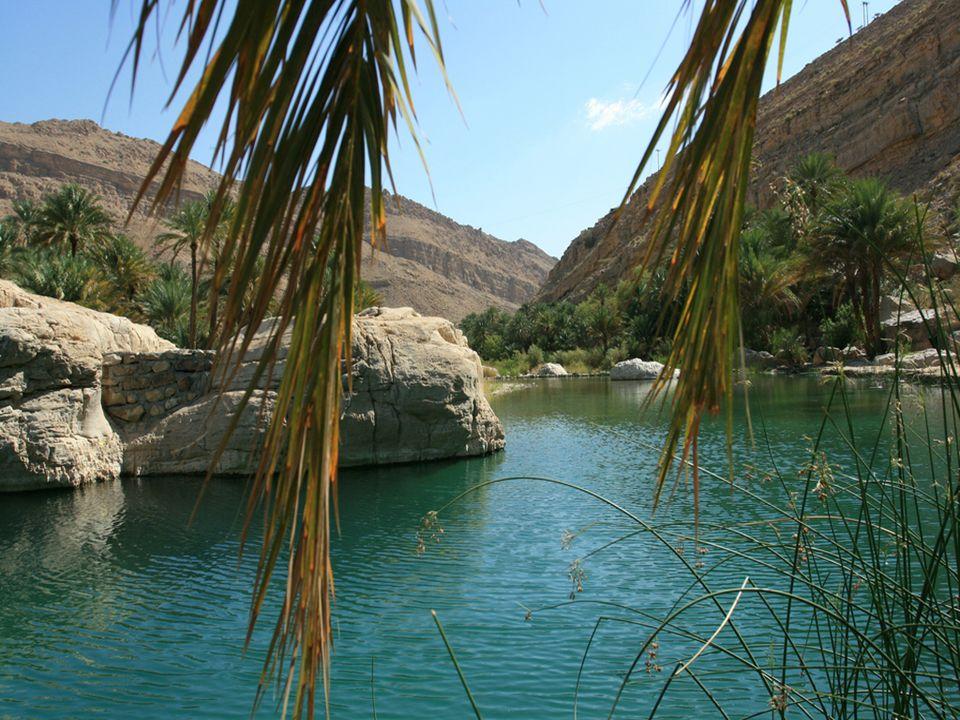 L'acqua un oasi pozzi, da una sorgente Gli Arabi impararono a cercare