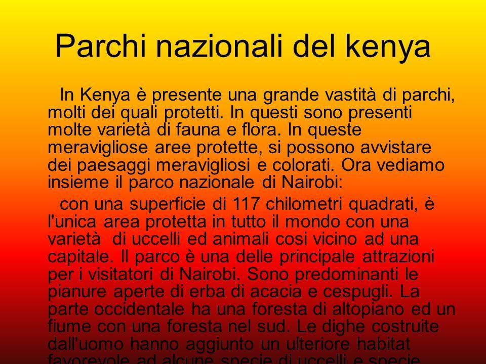 Parchi nazionali del kenya