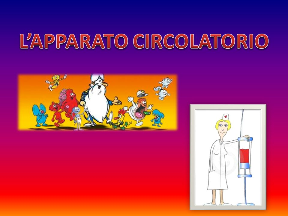 L'APPARATO CIRCOLATORIO