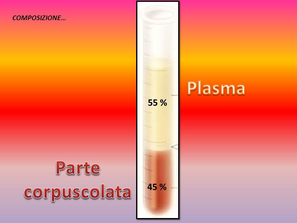 Plasma Parte corpuscolata