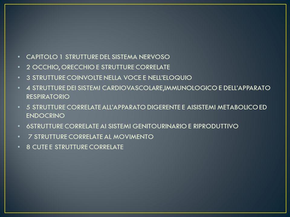 CAPITOLO 1 STRUTTURE DEL SISTEMA NERVOSO