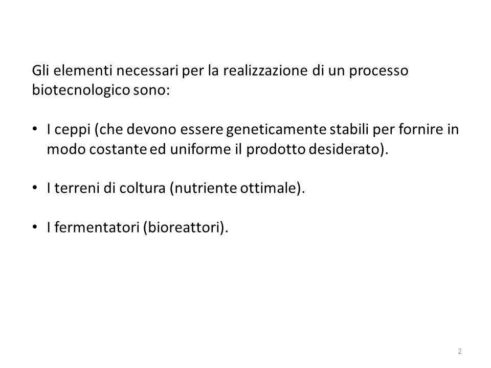 Gli elementi necessari per la realizzazione di un processo biotecnologico sono: