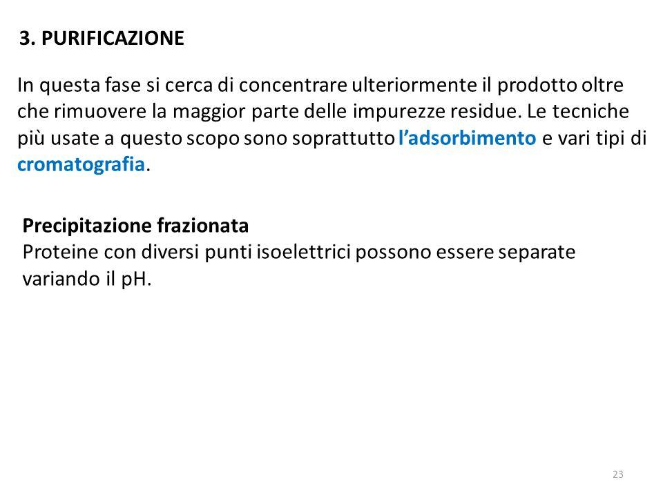 3. PURIFICAZIONE
