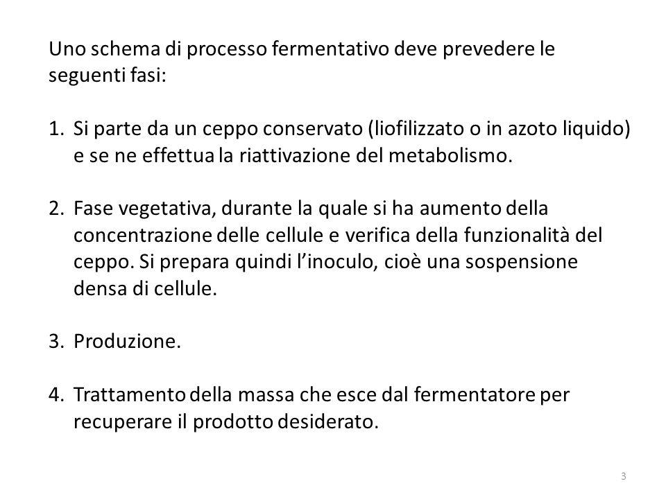 Uno schema di processo fermentativo deve prevedere le seguenti fasi: