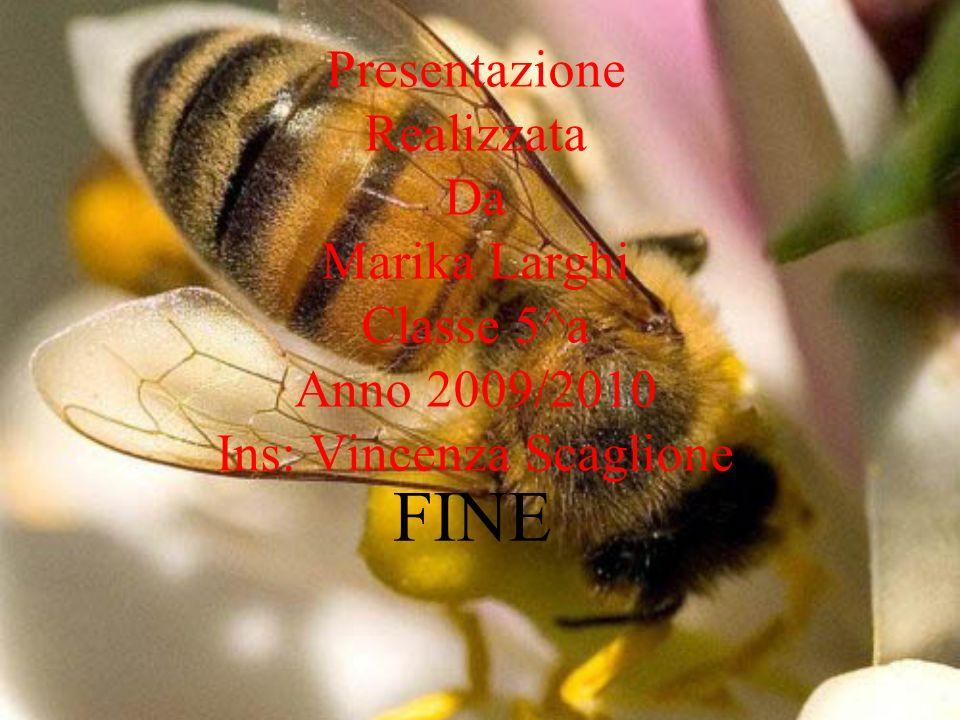 Presentazione Realizzata Da Marika Larghi Classe 5^a Anno 2009/2010 Ins: Vincenza Scaglione