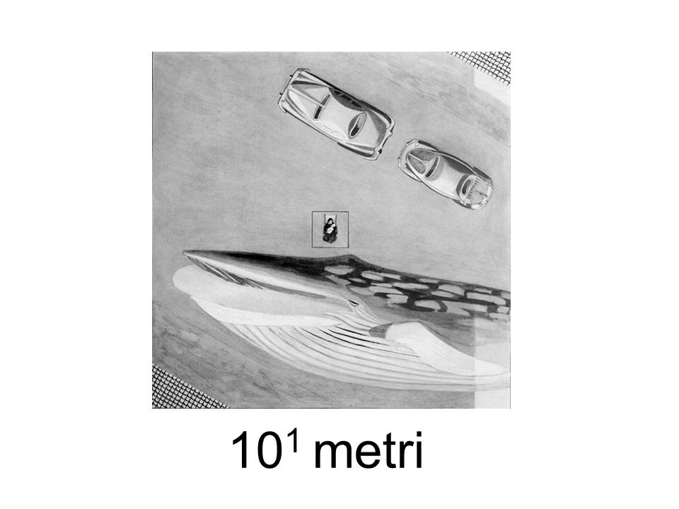 101 metri