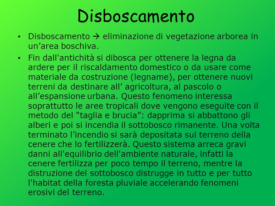 Disboscamento Disboscamento  eliminazione di vegetazione arborea in un'area boschiva.
