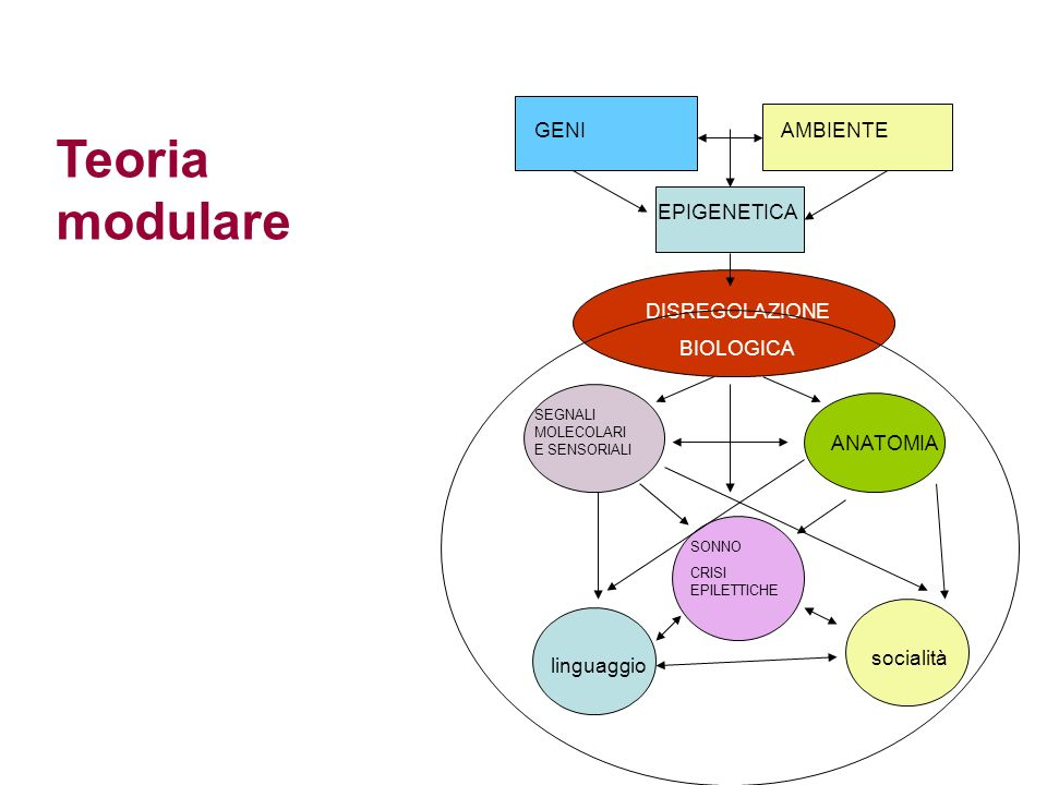 Teoria modulare GENI AMBIENTE EPIGENETICA DISREGOLAZIONE BIOLOGICA