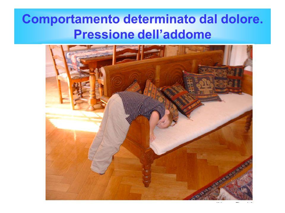 Comportamento determinato dal dolore. Pressione dell'addome