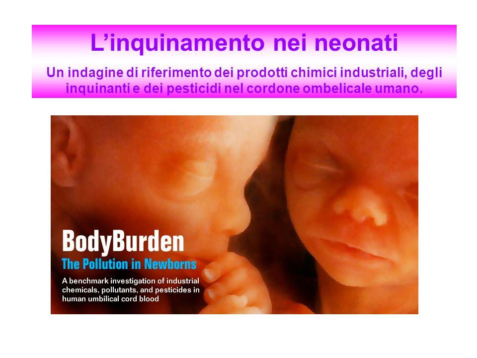 L'inquinamento nei neonati