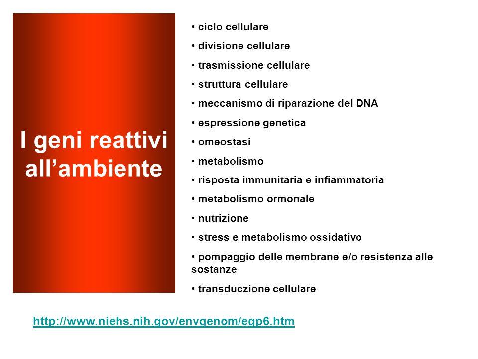 I geni reattivi all'ambiente