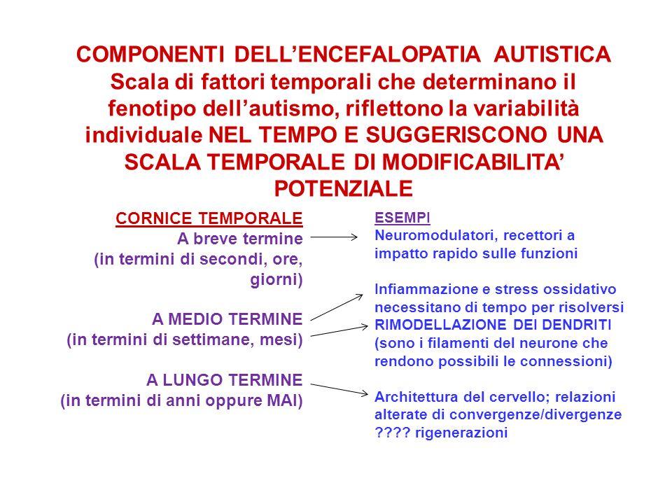 COMPONENTI DELL'ENCEFALOPATIA AUTISTICA