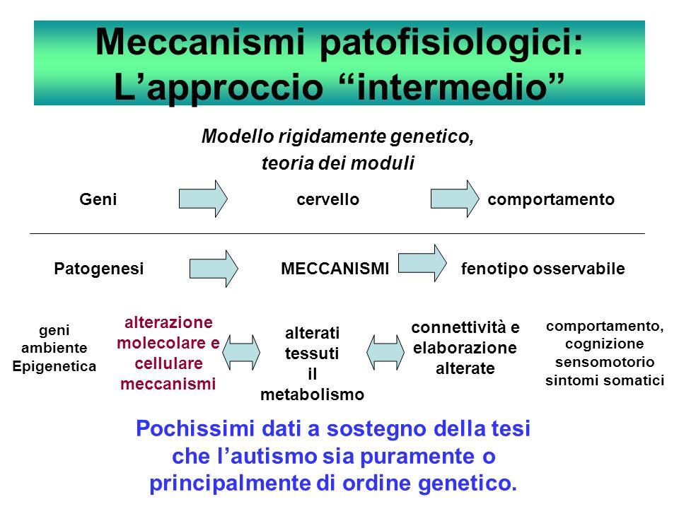 Meccanismi patofisiologici: L'approccio intermedio