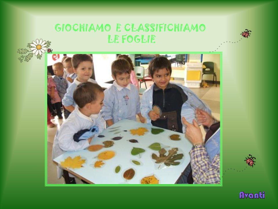 GIOCHIAMO E CLASSIFICHIAMO LE FOGLIE