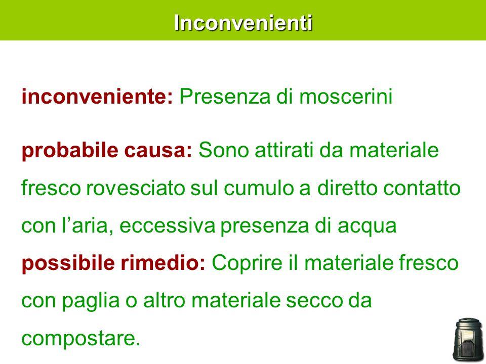 Inconvenienti inconveniente: Presenza di moscerini.