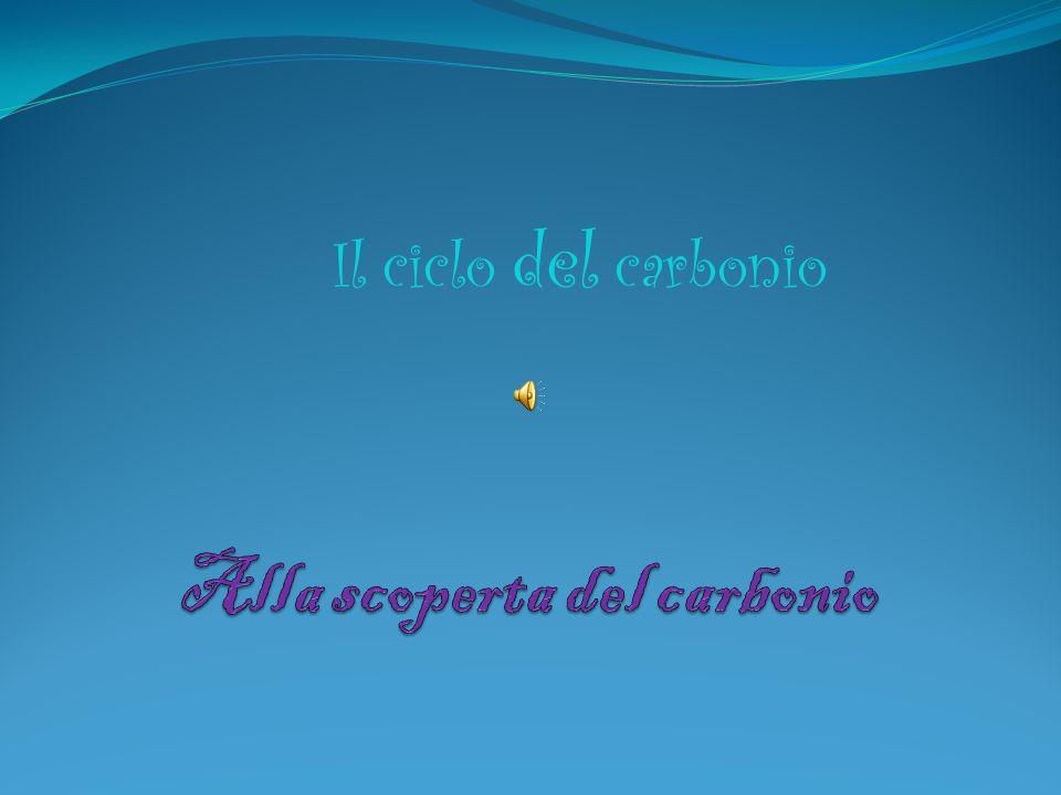 Alla scoperta del carbonio
