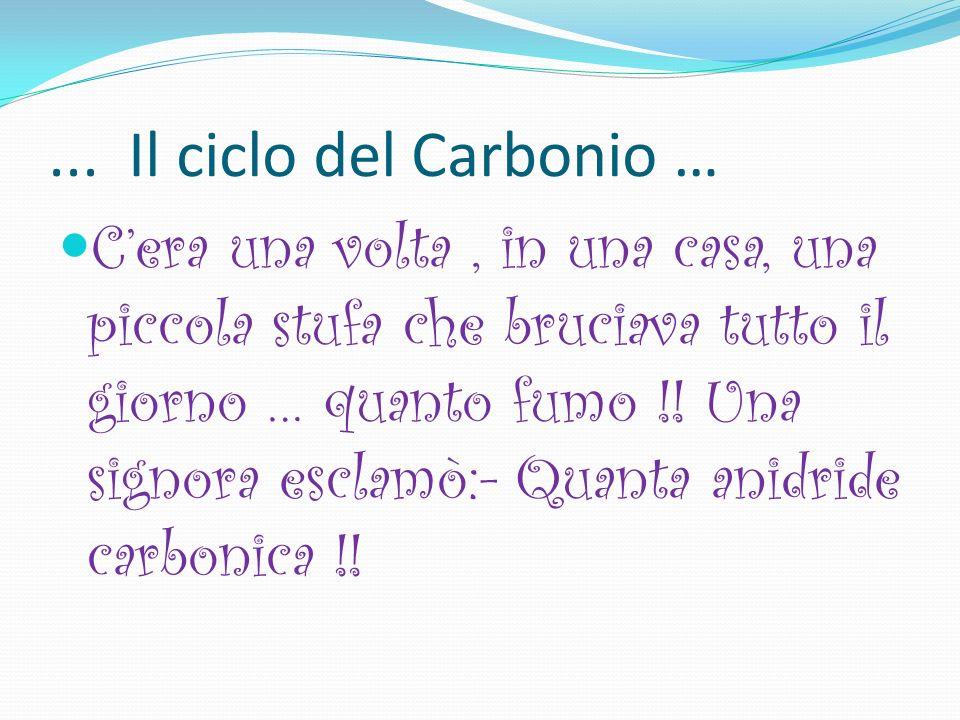 ... Il ciclo del Carbonio …