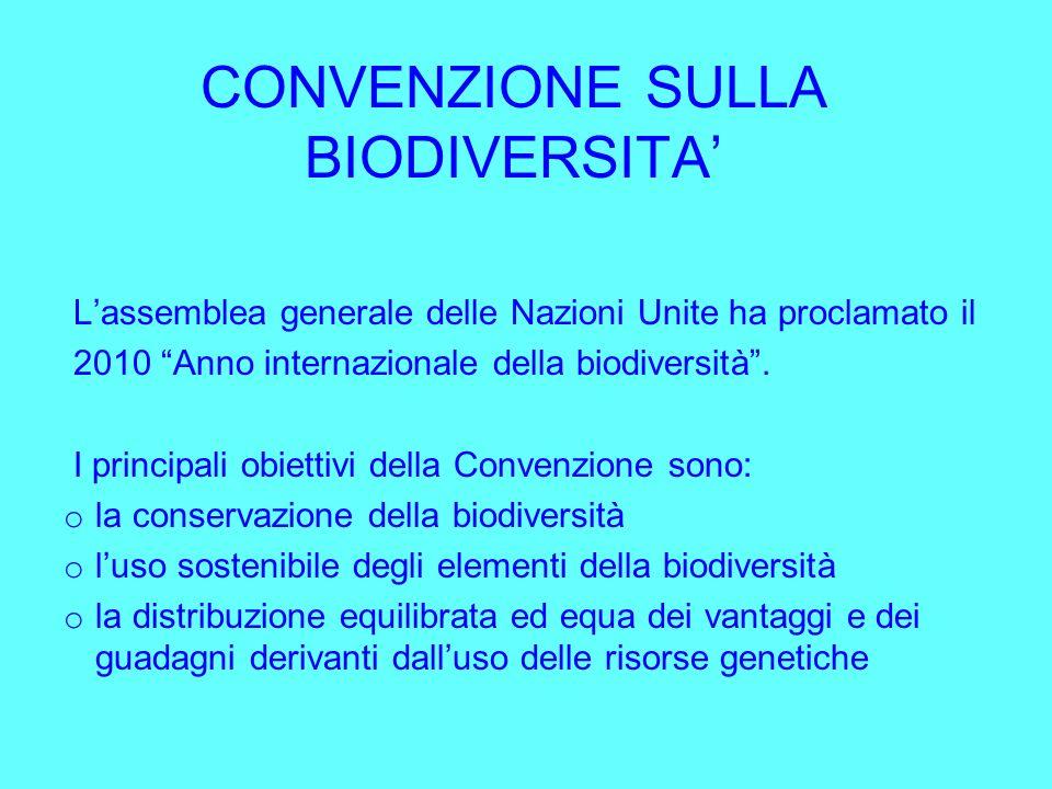 CONVENZIONE SULLA BIODIVERSITA'