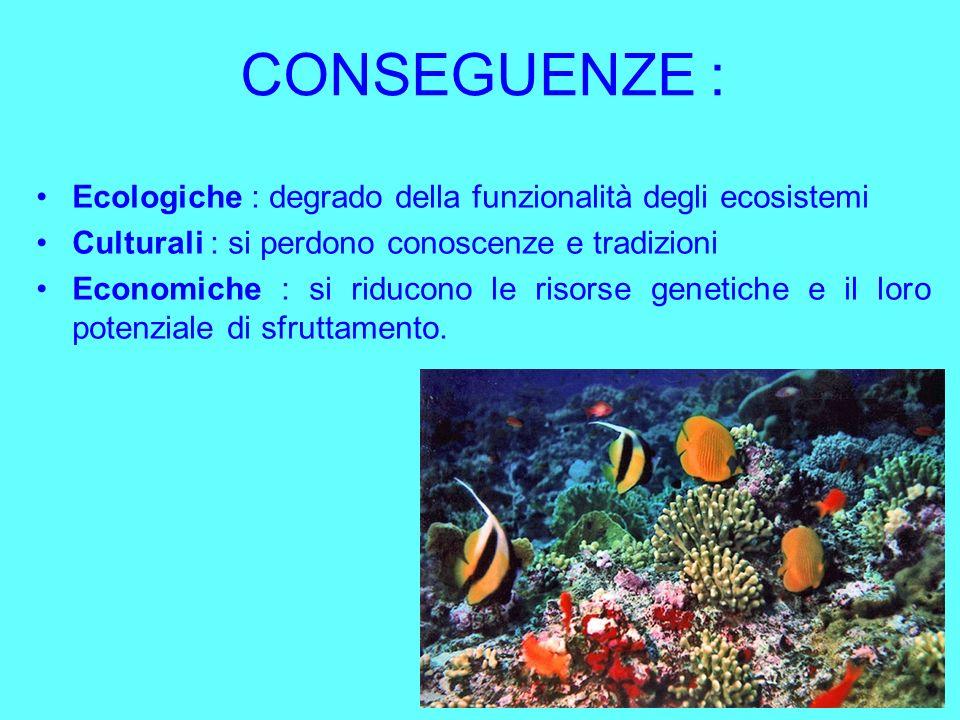 CONSEGUENZE : Ecologiche : degrado della funzionalità degli ecosistemi