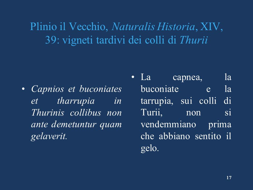 Plinio il Vecchio, Naturalis Historia, XIV, 39: vigneti tardivi dei colli di Thurii