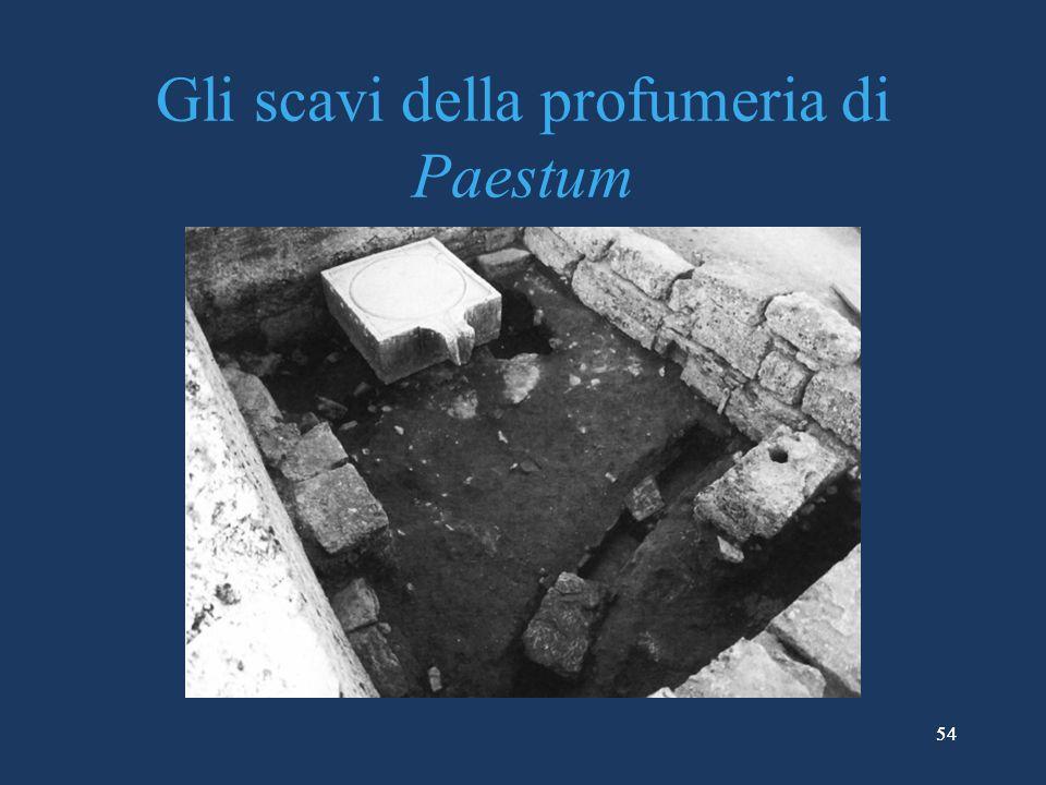 Gli scavi della profumeria di Paestum