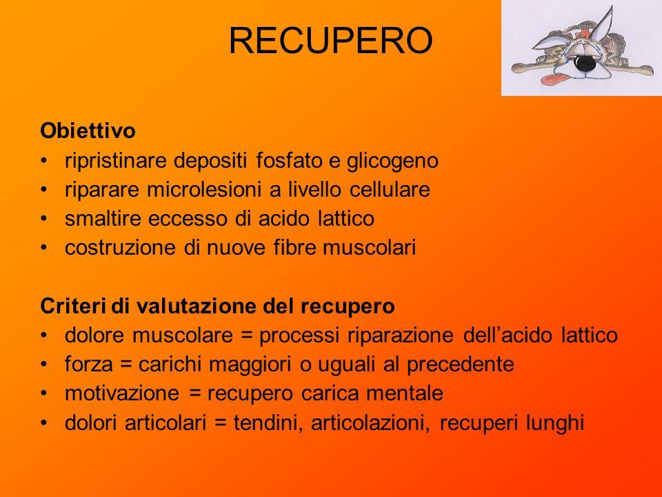 RECUPERO Obiettivo ripristinare depositi fosfato e glicogeno