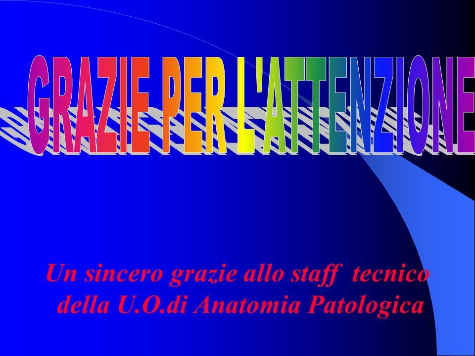 Un sincero grazie allo staff tecnico della U.O.di Anatomia Patologica