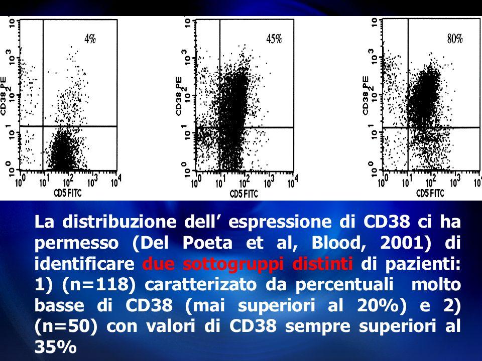 La distribuzione dell' espressione di CD38 ci ha permesso (Del Poeta et al, Blood, 2001) di identificare due sottogruppi distinti di pazienti: 1) (n=118) caratterizato da percentuali molto basse di CD38 (mai superiori al 20%) e 2) (n=50) con valori di CD38 sempre superiori al 35%