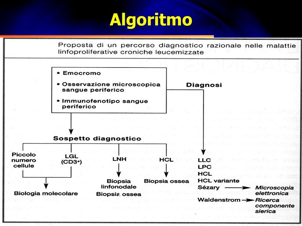 Algoritmo 2