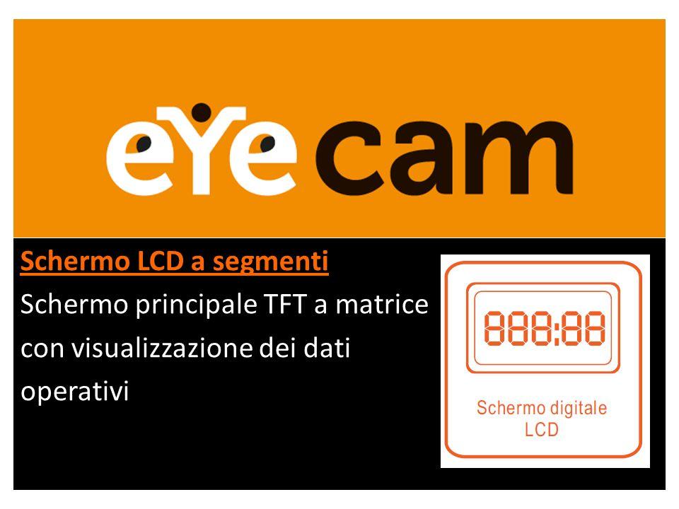 Schermo LCD a segmenti Schermo principale TFT a matrice con visualizzazione dei dati operativi