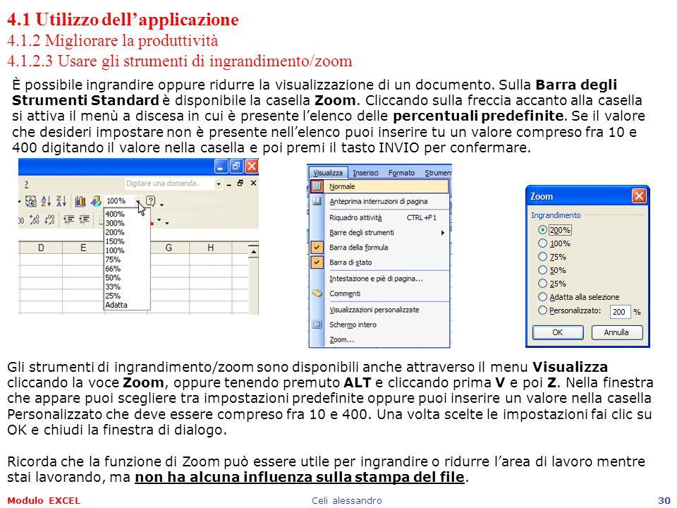 4.1 Utilizzo dell'applicazione 4.1.2 Migliorare la produttività 4.1.2.3 Usare gli strumenti di ingrandimento/zoom