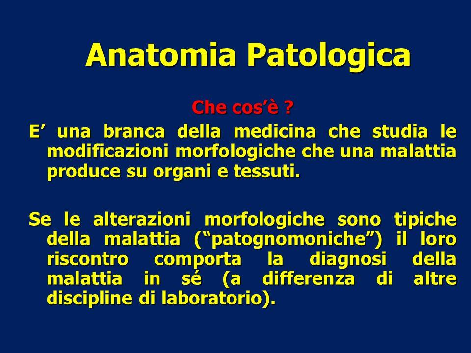 Anatomia Patologica Che cos'è