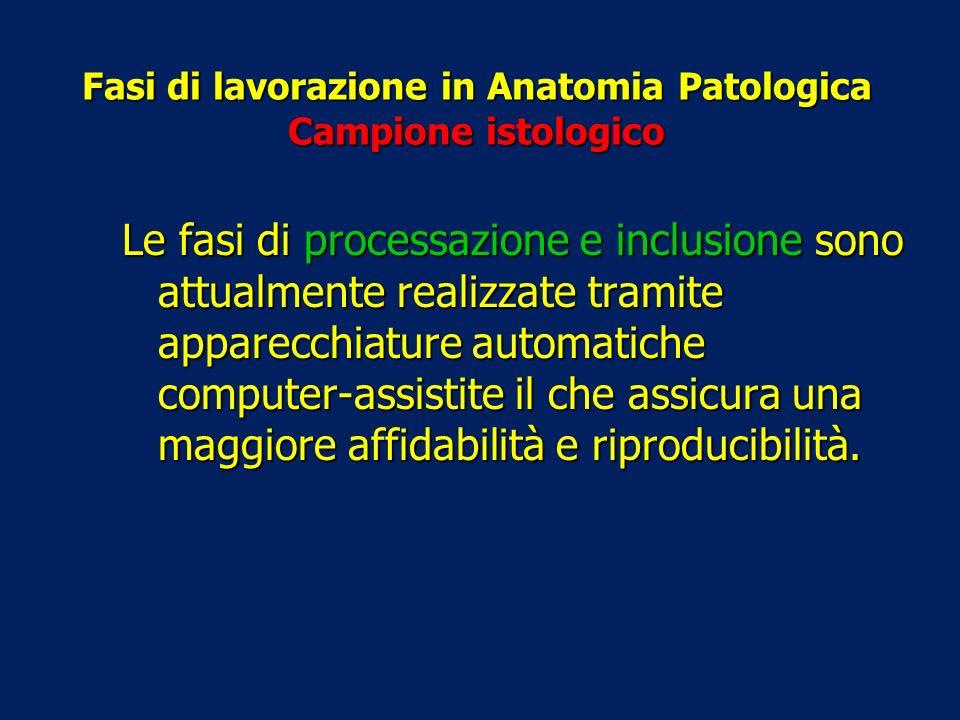 Fasi di lavorazione in Anatomia Patologica Campione istologico