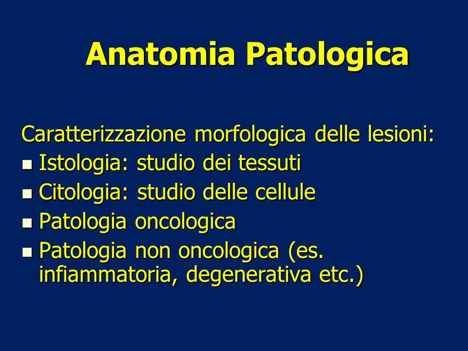 Anatomia Patologica Caratterizzazione morfologica delle lesioni: