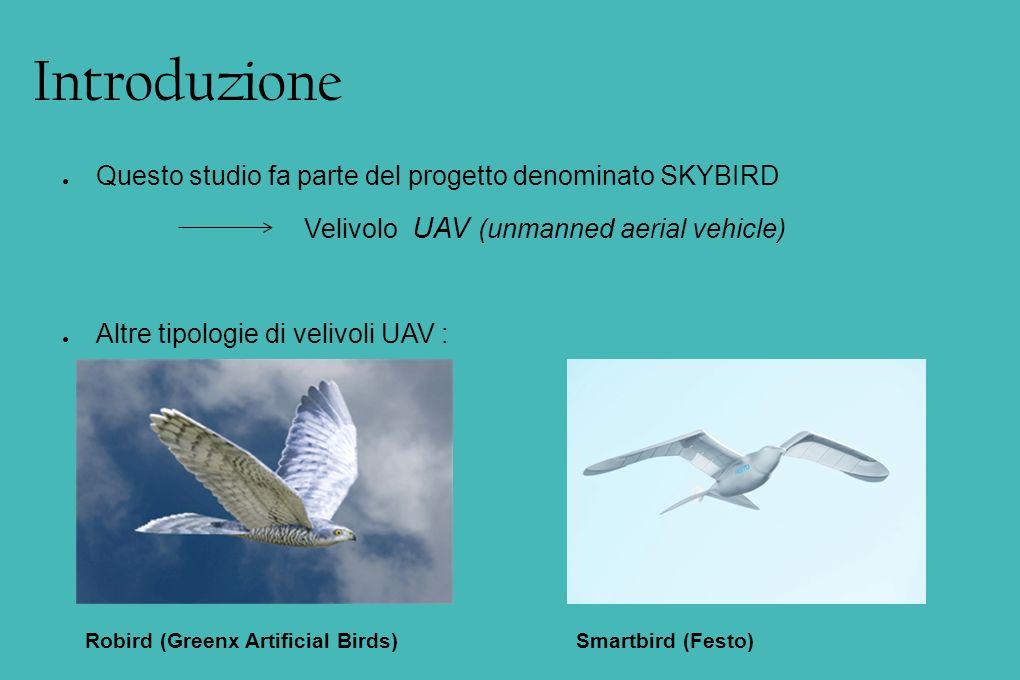 Introduzione Questo studio fa parte del progetto denominato SKYBIRD