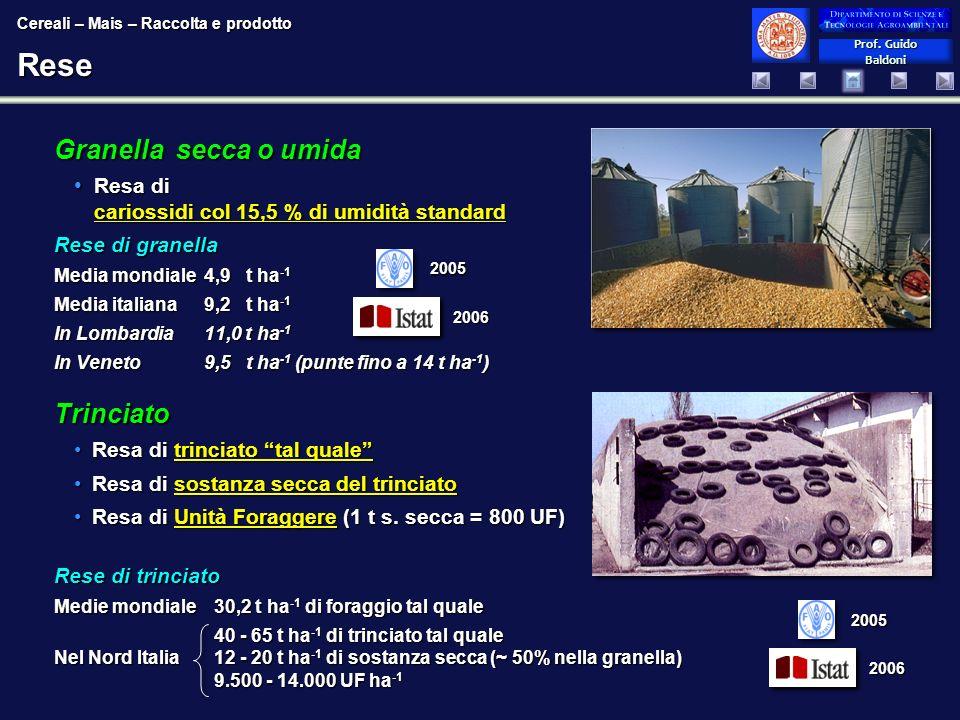 Rese Granella secca o umida Trinciato