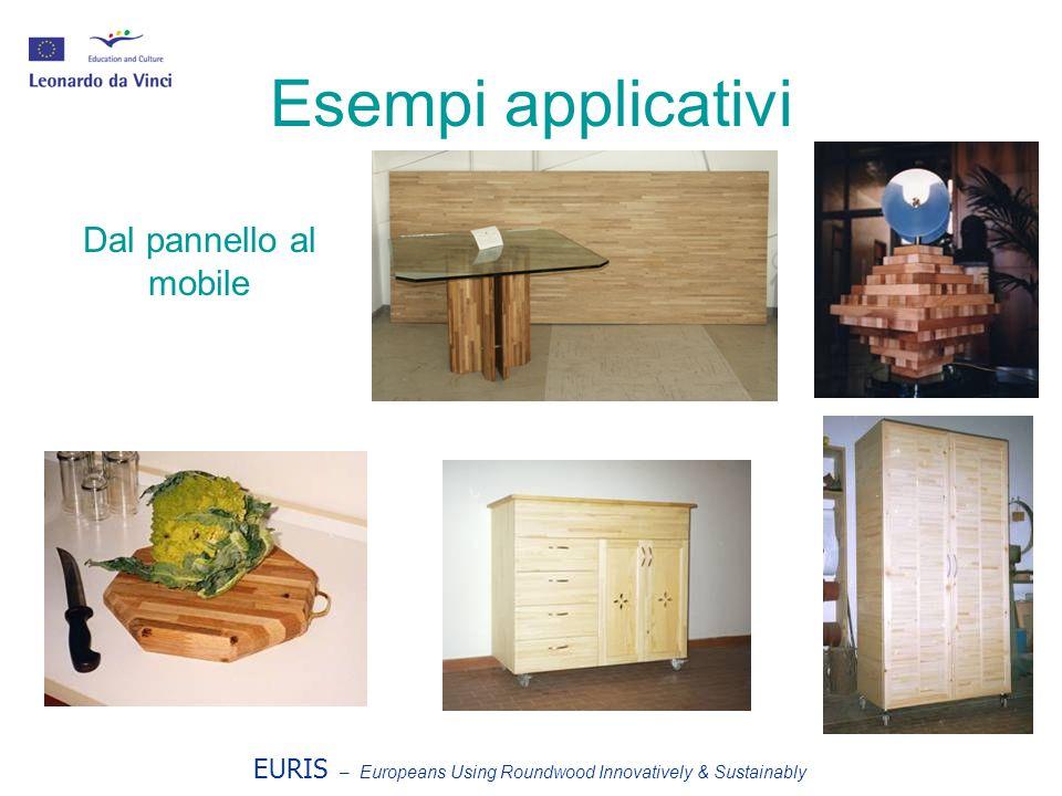 Esempi applicativi Dal pannello al mobile