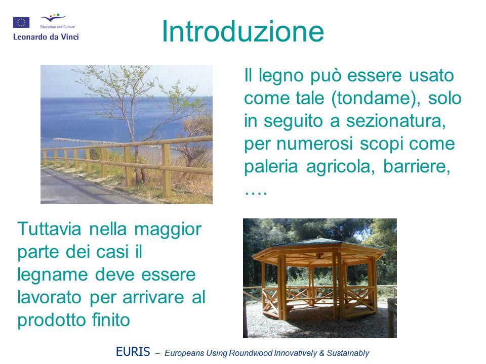Introduzione Il legno può essere usato come tale (tondame), solo in seguito a sezionatura, per numerosi scopi come paleria agricola, barriere, ….