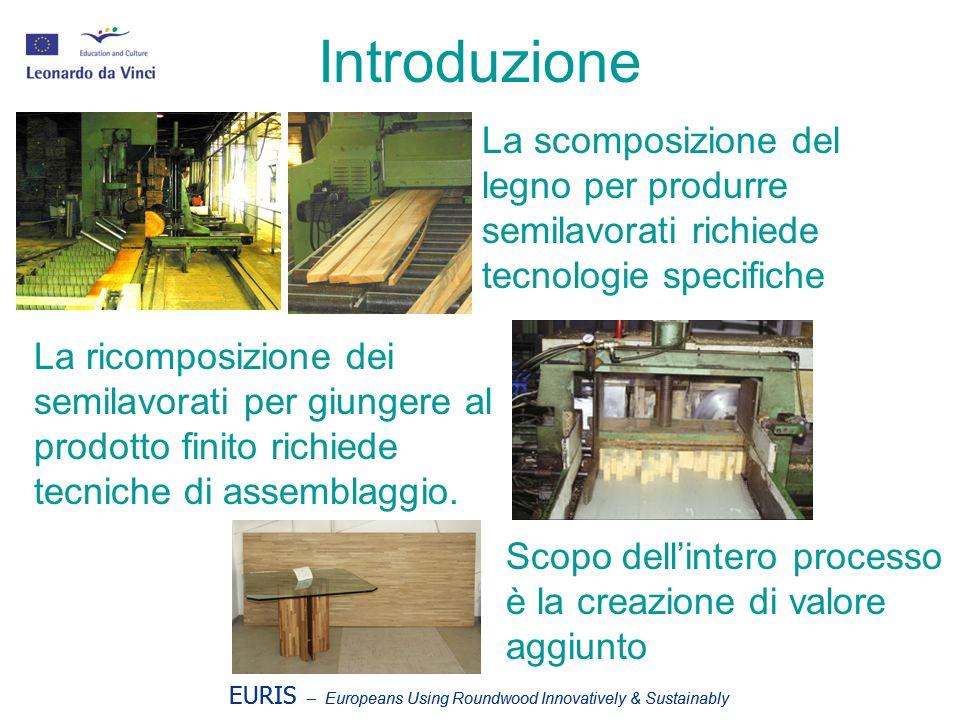 Introduzione La scomposizione del legno per produrre semilavorati richiede tecnologie specifiche.