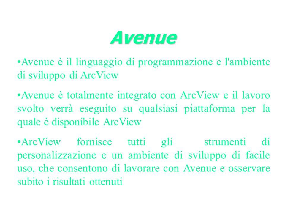 Avenue Avenue è il linguaggio di programmazione e l ambiente di sviluppo di ArcView.