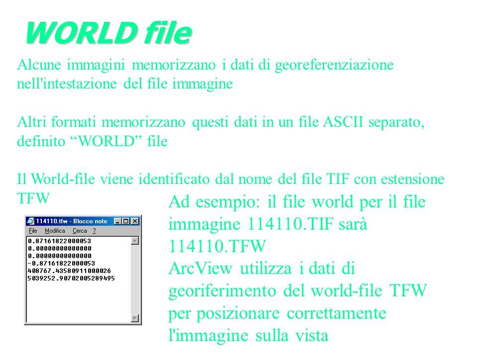 WORLD file Alcune immagini memorizzano i dati di georeferenziazione nell intestazione del file immagine.