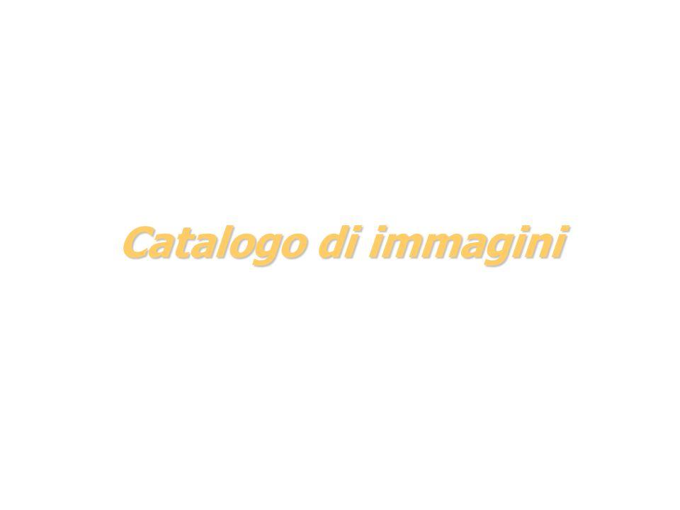 Catalogo di immagini