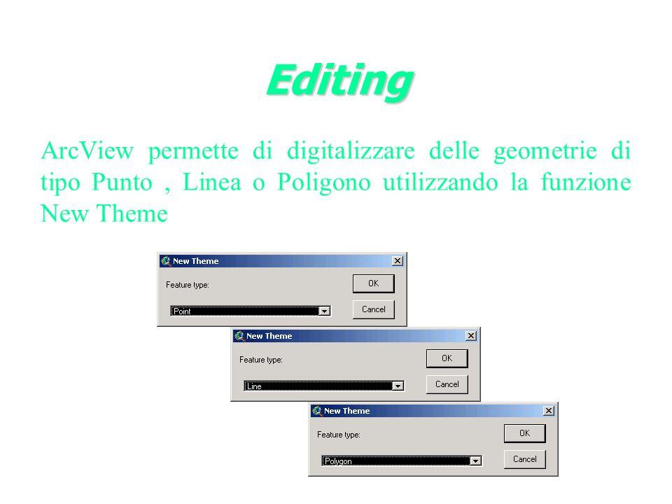 Editing ArcView permette di digitalizzare delle geometrie di tipo Punto , Linea o Poligono utilizzando la funzione New Theme.