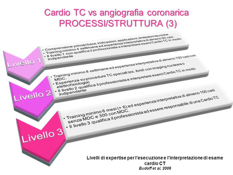 Cardio TC vs angiografia coronarica PROCESSI/STRUTTURA (3)