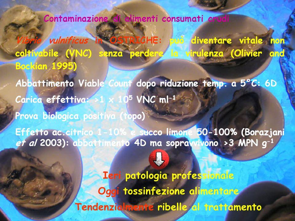 Contaminazione di alimenti consumati crudi